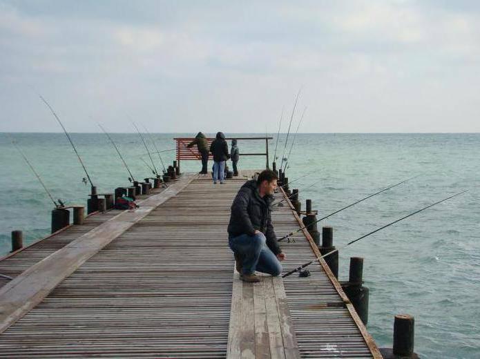 Рыбалка в анапе с берега