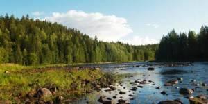 Река в Карелии