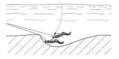 Как правильно ловить на джиг