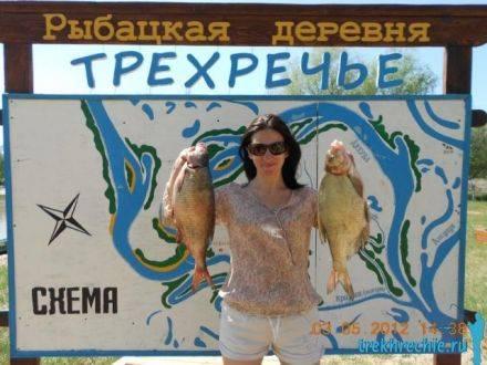 Как сделать болтушку для рыбалки