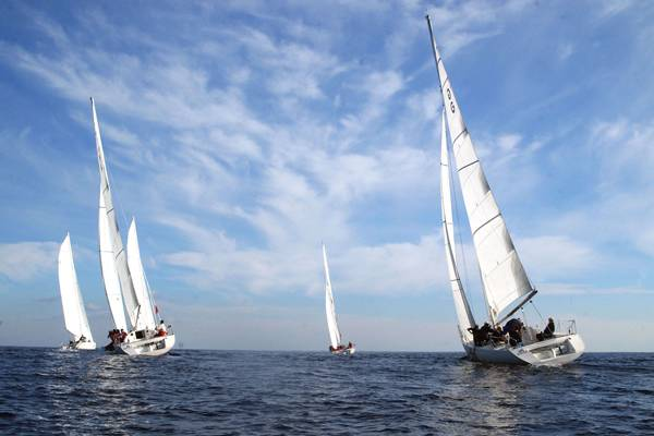 Как плывет парусник против ветра