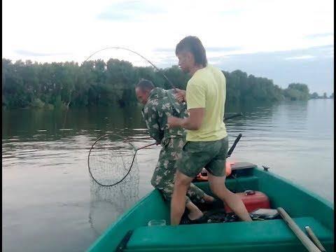 Снасти для ловли сома на квок